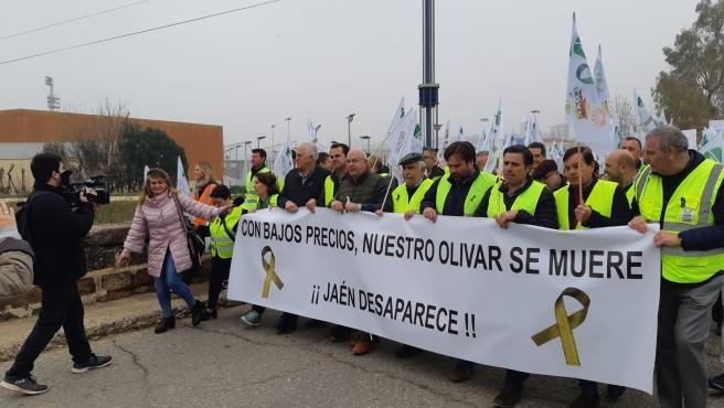 Protesta convocada por l organizaciones agrarias por los precios del aceite en Jaén