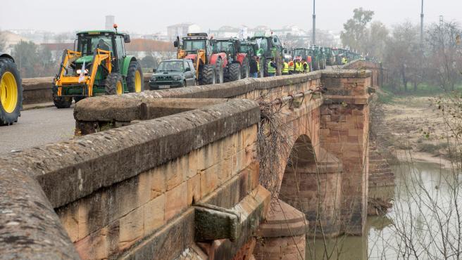 Una caravana de tractores, durante la protesta de este jueves en Jaén.