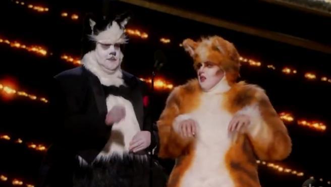 Los 'Cats' de los Oscar 2020, mejor que los de la peli