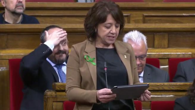 La diputada de JxCat ha comparecido en el Parlament con unas polémicas declaraciones.