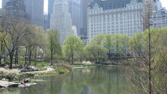 Central Park en Nueva York.