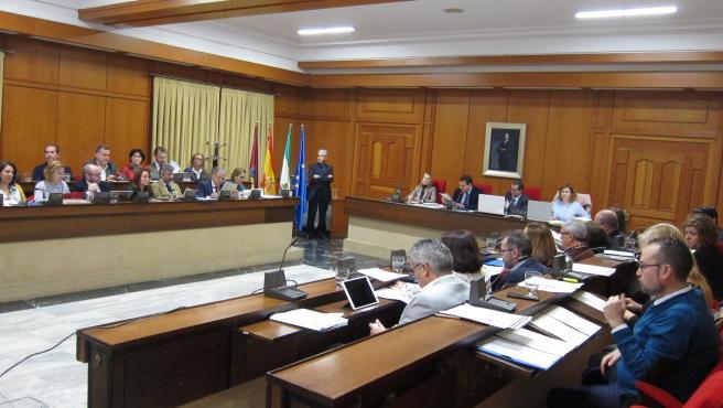 Pleno del Ayuntamiento de Córdoba.