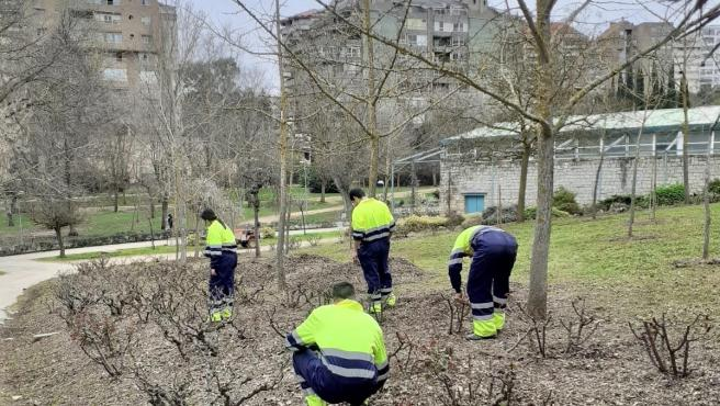 Cuatro jóvenes cacereños realizan trabajos a la comunidad por haber sido sorprendidos haciendo botellón