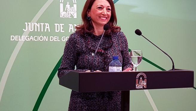 La delegada de la Junta de Andalucía en Málaga, Patricia Navarro, en rueda de prensa