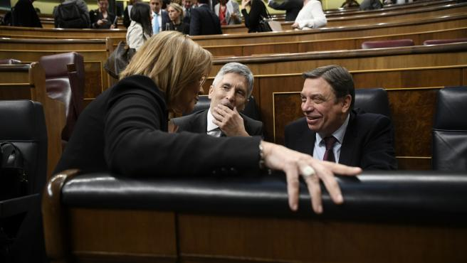 El ministro de Interor, Fernando Grande- Marlaska (centro) y el ministro de Agricultura, Pesca y Alimentación, Luis Planas, en el Pleno del Congreso