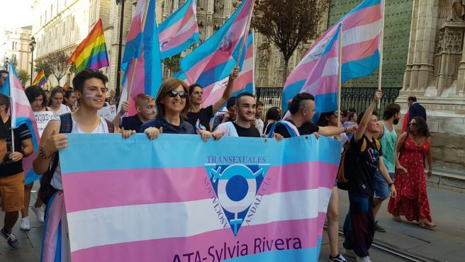 Manifestación del colectivo trans