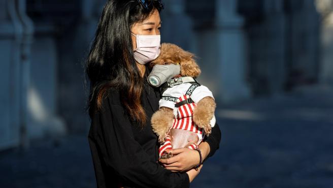 Una mujer y su perro en la ciudad china de Cantón, protegidos con mascarillas.
