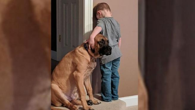 Imagen del niño castigado junto a su mejor amigo.