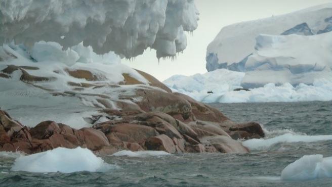 Una isla oculta surge en la Antártida por el deshielo glaciar.