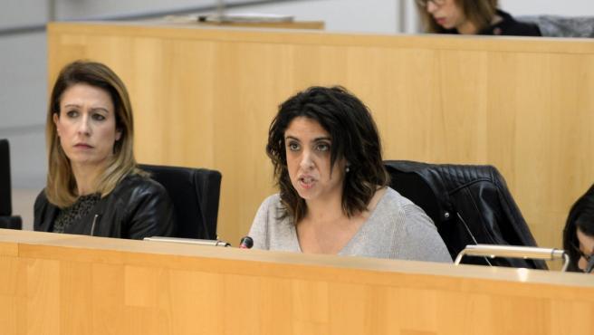 La diputada provincial del PSOE Desireé Cortes en un pleno de la Diputación de Málaga
