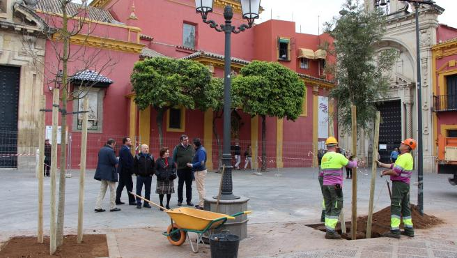 La plaza de San Lorenzo tras la tala de los plátanos que la poblaban