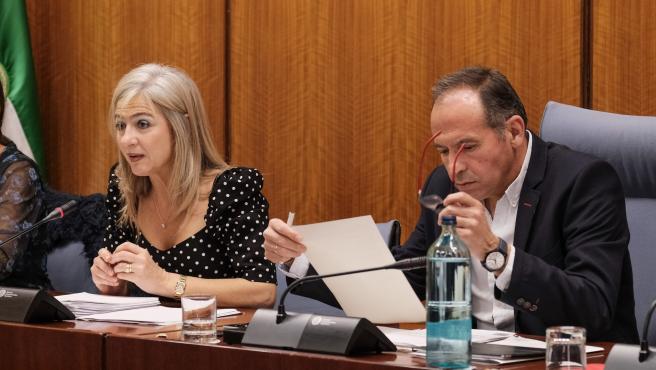 Comparecencia de Patricia del Pozo en la comisión de cultura