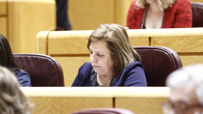María del Carmen Leyte, senadora del PP