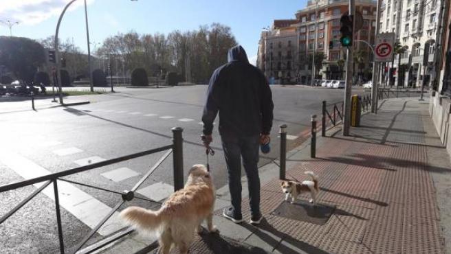 Un hombre pasea a su perro en el centro de Madrid durante la cuarentena.