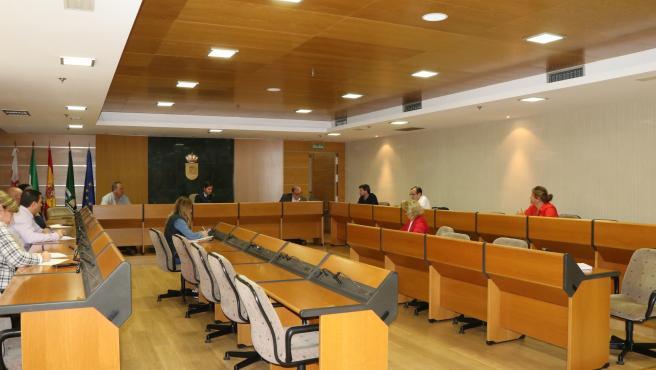 Comisión de medidas de apoyo a mayores de El Ejido (Almería)