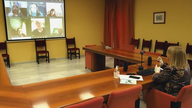Alcaldesa de Jerez manteniendo una reunión por videoconferencia