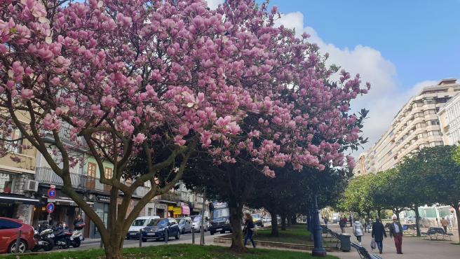 Primavera en Santander