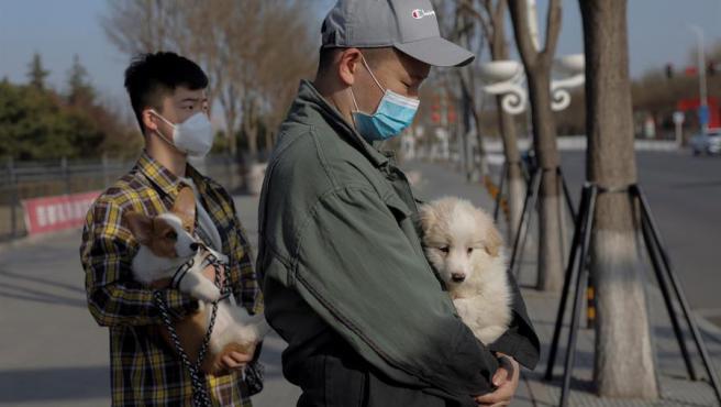 Dos ciudadanos protegidos por mascarillas por el coronavirus COVID-19, con sus perros, en Pekín, China.