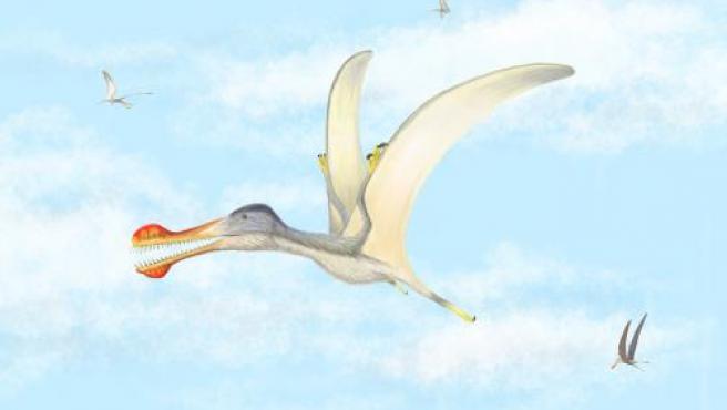 Recreación de la nueva especie de pterosaurio Anhanguera Recreación de la nueva especie de pterosaurio Anhanguera 25/3/2020