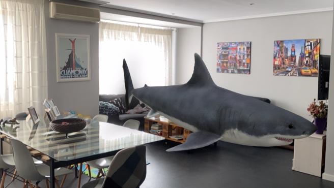 Gracias a la realidad aumentada, puedes colocar un tiburón en tu salón con Google.