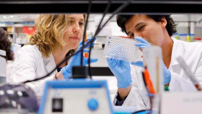 Científicas investigan el coronavirus