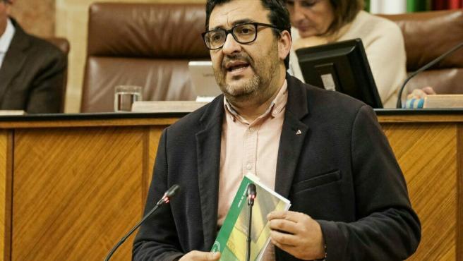 El diputado de Adelante Andalucía Guzmán Ahumada interviene en el Parlamento andaluz.
