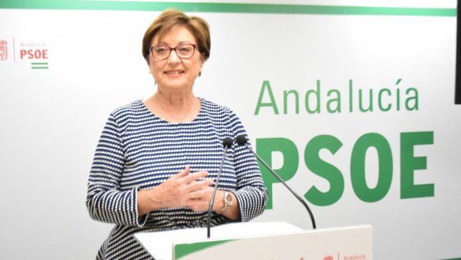 La senadora del PSOE Marisa Bustinduy