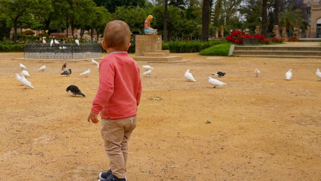 Un niño en la Plaza de América, conocida como la de las palomas del Parque de Maria Luisa de Sevilla
