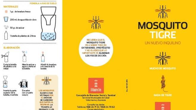 Imagen de la estrategia a llevar a cabo con el mosquito tigre en Murcia