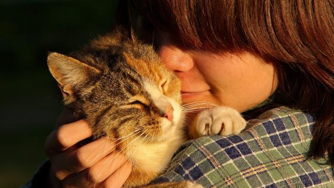 Un niño acaricia cariñosamente a su gato