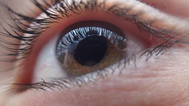 La razón es que esta parte del ojo recibe el oxígeno directamente del aire, por lo que no requiere del suministro de sangre como el resto del organismo.