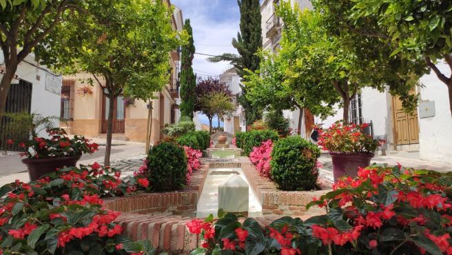 Estepona Jardín de la Costa del Sol, proyecto de embellecimiento llevado a cabo por el Ayuntamiento de la localidad malagueña
