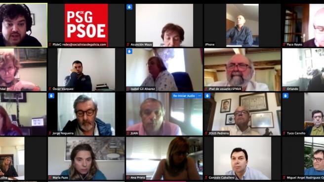 Reunión telemática del comité de sanidad del PSdeG