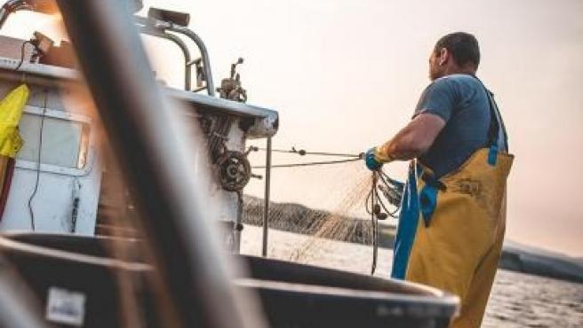 Coronavirus.- Carrefour compra un 35% más de pescado a 60 lonjas locales, algunas de Cantabria
