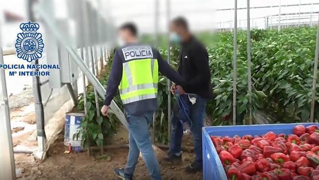 Imagen de la actuación desarrollada por la Policía Nacional