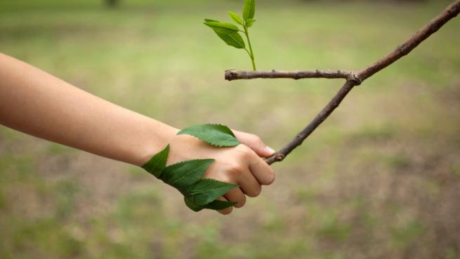 El necesario contacto con la naturaleza.