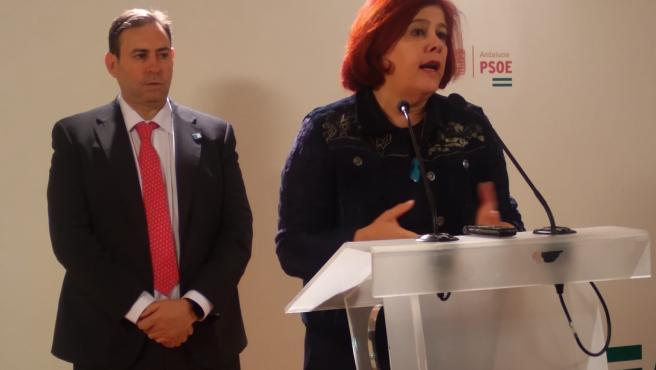 """El PSOE celebra la """"celeridad"""" del Gobierno para incluir el puerto de Motril como punto de entrada"""