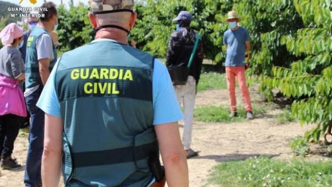 Inspecciones de la Guardia Civil en explotaciones agrícolas