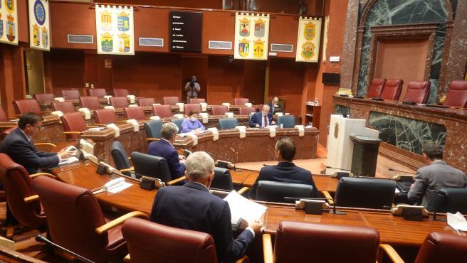 El presidente de la Asamblea Regional, Alberto Castillo, anuncia que la Junta de Portavoces ha aprobado que el debate sobre el estado de la Región se celebre los días martes 16 y miércoles 17 de junio