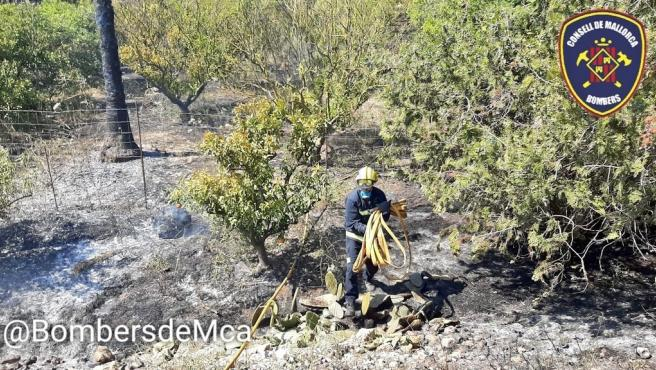 Uno De Los Incendios De Sa Pobla En Los Que Han Actuado Este Miércoles Los Bomberos De Mallorca.
