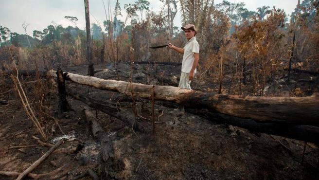 Un ganadero en un territorio de la selva en el estado de Rondonia, en Brasil