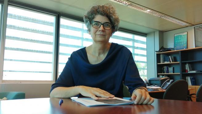Educación convoca ayudas para la movilidad en la Unión Europea y para cursar estudios fuera de las Islas