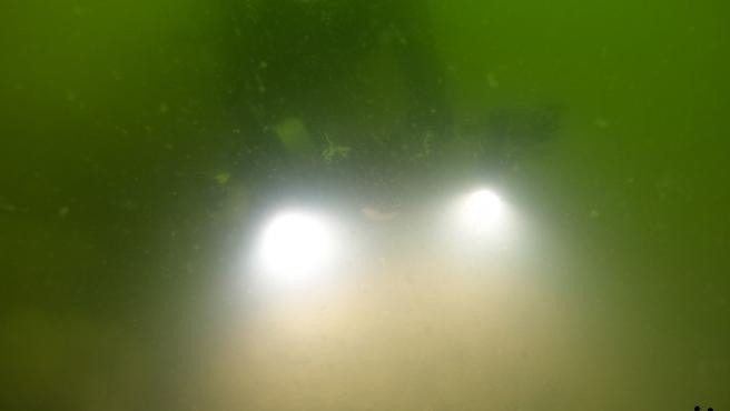Imagen captada por ANSE y WWF en las profundidades del Mar Menor