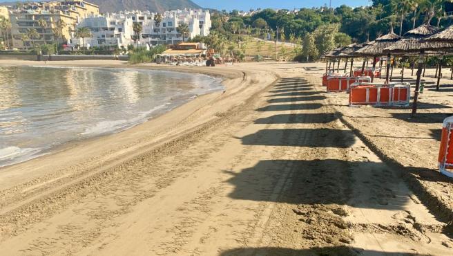 Limpieza de algas invasoras en las playas de Estepona