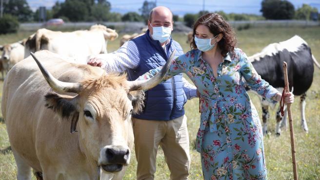 Isabel Díaz Ayuso presenta un proyecto de comercio online de jóvenes ganaderos.