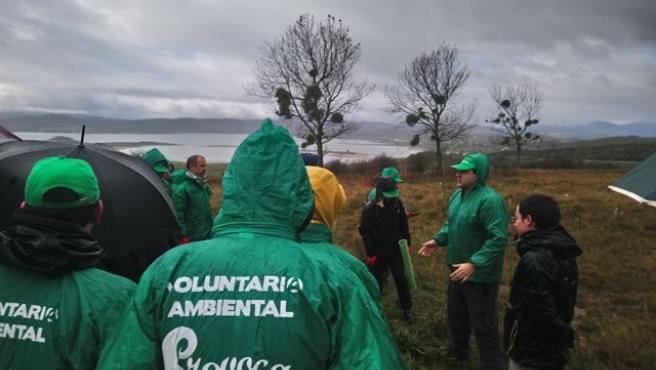 Voluntarios del Provoca plantan árboles en Campoo de Yuso