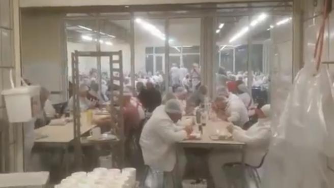 Captura del vídeo difundido por redes sociales del comedor del matadero de Alemania.