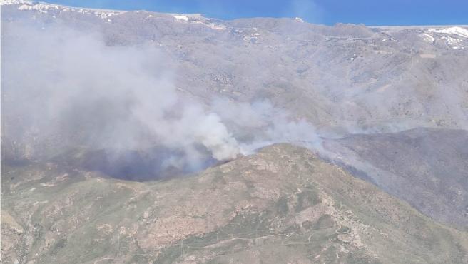 La zona incendiada en Mojácar.