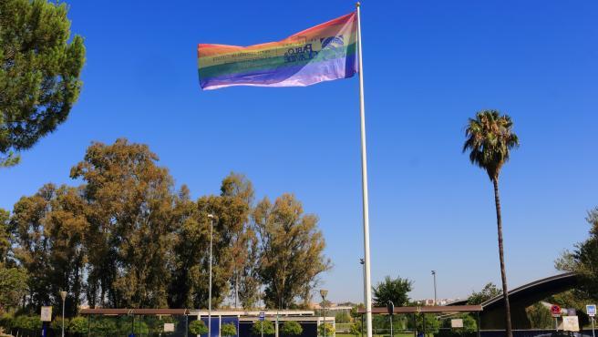 UPO se suma a la conmemoración del Día Internacional del Orgullo Gay y ondea la bandera arcoiris en su campus