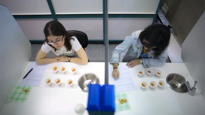Sala de Catas de la Escuela Técnica Superior de Ingeniería Agronómica y Biociencias de la Universidad Pública de Navarra.